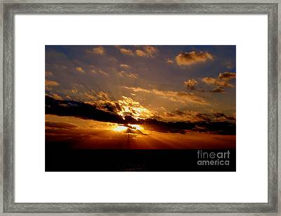 Osculate Framed Print by Priscilla Richardson