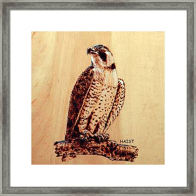 Osprey 2 Pillow/bag Framed Print by Ron Haist