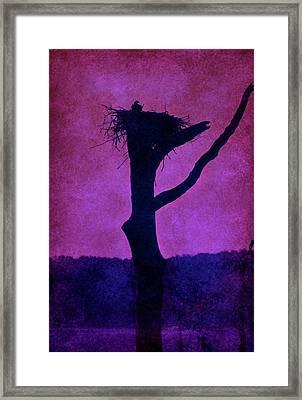 Osprey Nest Silhouette - Manasquan Reservoir Framed Print by Angie Tirado