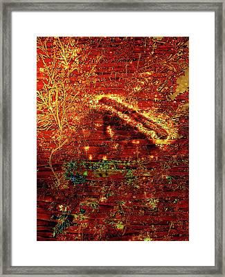 Osterreich Framed Print by David BERNARD