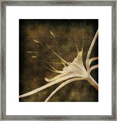 Our Melody Framed Print by Susanne Van Hulst