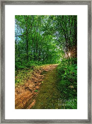 Our Path Framed Print by Andrew Slater