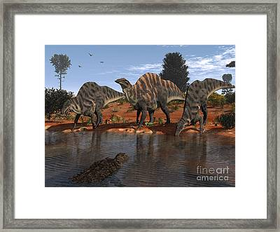 Ouranosaurus Drink At A Watering Hole Framed Print by Walter Myers
