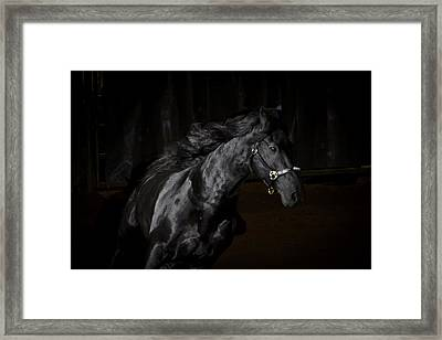 Out Of The Darkness D4367 Framed Print by Wes and Dotty Weber