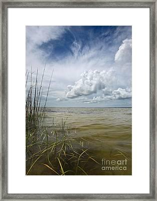 Outer Banks Coastline Framed Print by Matt Tilghman