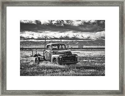 Outstanding In The Field Framed Print by Kurt Golgart