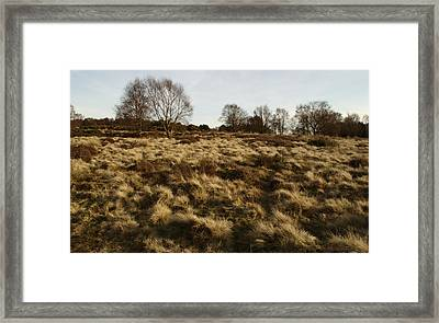 Over The Heath Framed Print by Adrian Wale