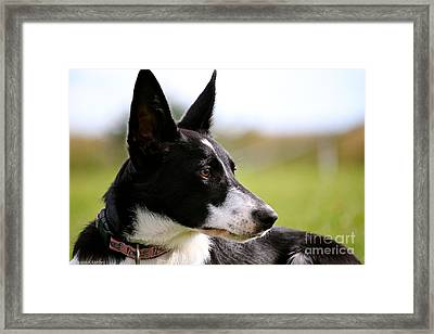 Over There Framed Print by Susan Herber