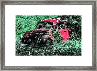 Overgrown Bug Framed Print by Jeremy Rickman