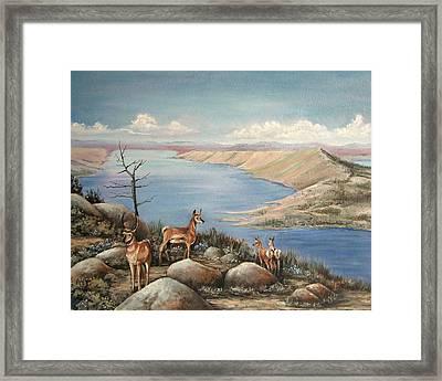 Overlook Framed Print by Cynara Shelton