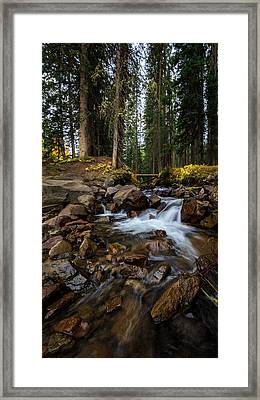 Owl Creek Cathedral Framed Print by Jennifer Grover