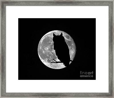 Owl Moon Framed Print by Al Powell Photography USA