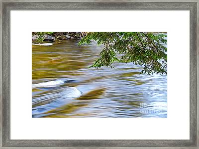 Oxtongue River Rapids Framed Print by Charline Xia