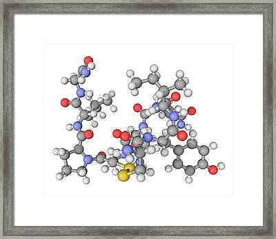 Oxytocin Neurotransmitter Molecule Framed Print by Laguna Design
