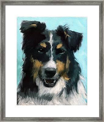 Ozzie Animal Dog Portrait Framed Print by Linda Apple