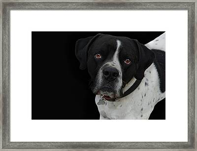 Pablo From Spain Framed Print by Joachim G Pinkawa