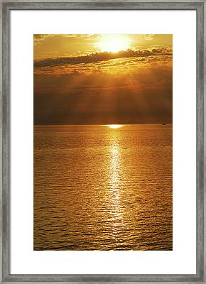 Pacfic Gold 8030 Framed Print by Michael Peychich