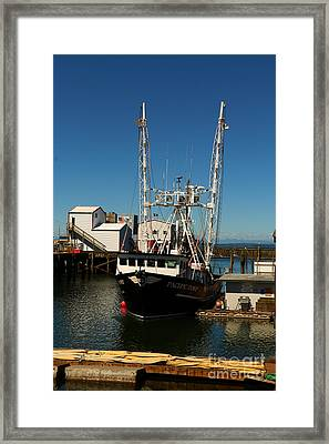 Pacific Dove - Westport Harbor Framed Print by Christiane Schulze Art And Photography
