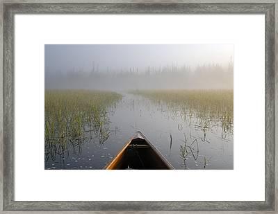 Paddling Into The Fog Framed Print by Larry Ricker