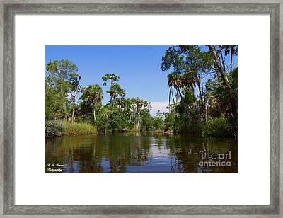 Paddling Otter Creek Framed Print by Barbara Bowen