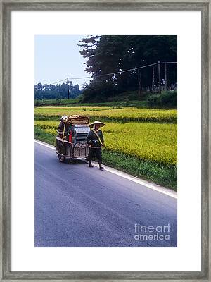 Paddy Wagon  Framed Print by Bob Phillips