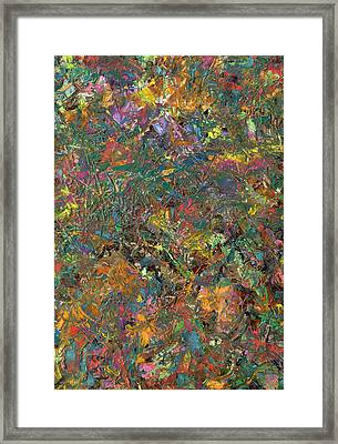 Paint Number 29 Framed Print by James W Johnson
