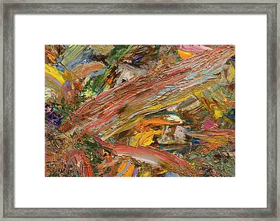 Paint Number 41 Framed Print by James W Johnson