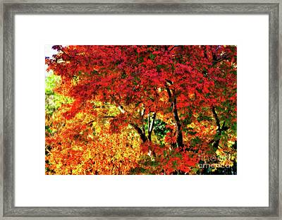Painted Autumn By Kaye Menner Framed Print by Kaye Menner