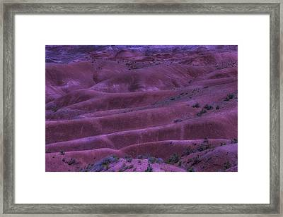 Painted Desert Azorina Framed Print by Garry Gay