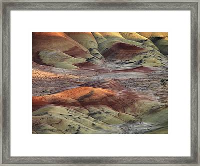 Painted Hills Color And Texture Framed Print by Leland D Howard