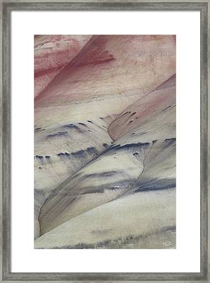 Painted Hills Textures 2 Framed Print by Leland D Howard