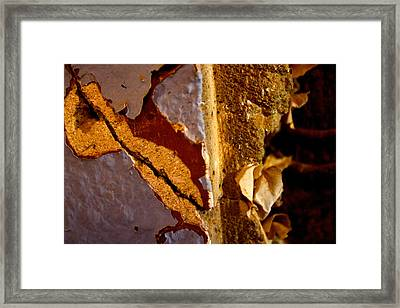 Painted Layers Framed Print by Caroline Walker