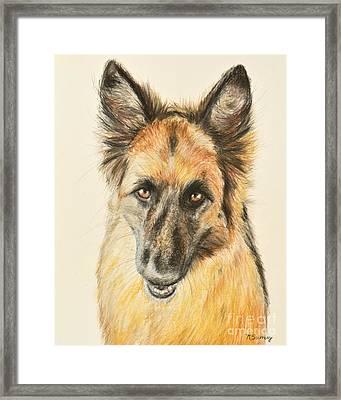 Painting Of A German Shepherd Framed Print by Kate Sumners