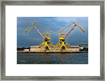 Pair Of Cranes Framed Print by Christopher Holmes