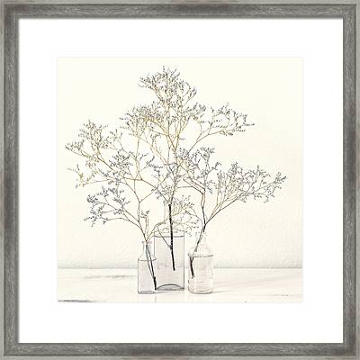 Pale Blue Flowers On White Framed Print by Carol Leigh