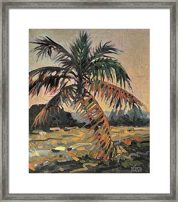 Palm Framed Print by Donald Maier