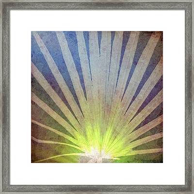 Palm Frond Light Framed Print by Marvin Spates