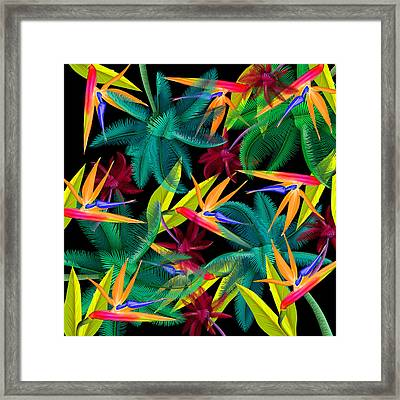 Palm Tree 4 Framed Print by Mark Ashkenazi