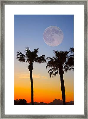 Palm Tree Full Moon Sunset Framed Print by James BO  Insogna