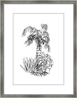 Palm Tree Framed Print by Masha Batkova