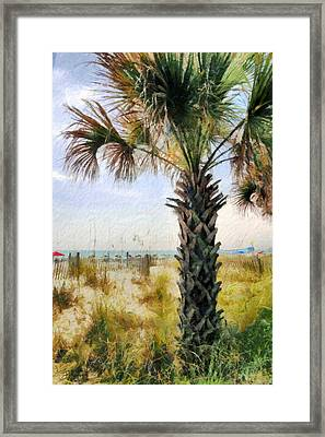Palm Tree  Framed Print by Theresa Campbell