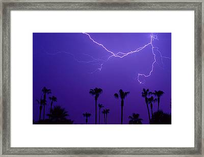 Palm Trees And Spider Lightning Striking Framed Print by James BO  Insogna