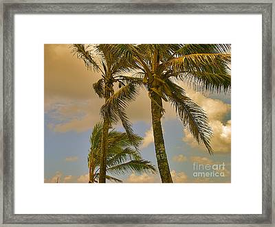 Palm Trees Framed Print by Silvie Kendall