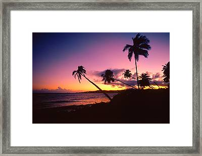 Palmas Del Mar Sunset Puerto Rico Framed Print by George Oze