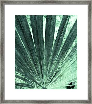 Palmetto Abastract No. 4 Framed Print by Marvin Spates