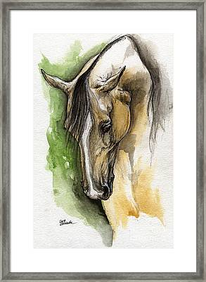 Palomino Arabian Horse Watercolor Portrait 1  Framed Print by Angel  Tarantella