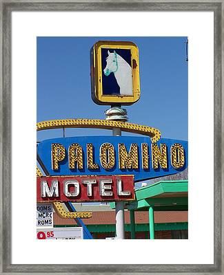 Palomino Framed Print by David Gianfredi