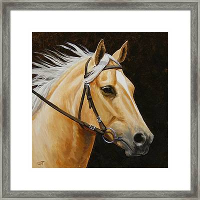 Palomino Horse Portrait Framed Print by Crista Forest