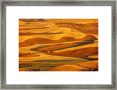 Palouse Gold And Brown Framed Print by Mary Jo Allen