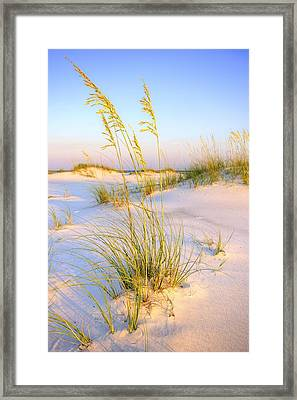 Panama City Sands Framed Print by JC Findley